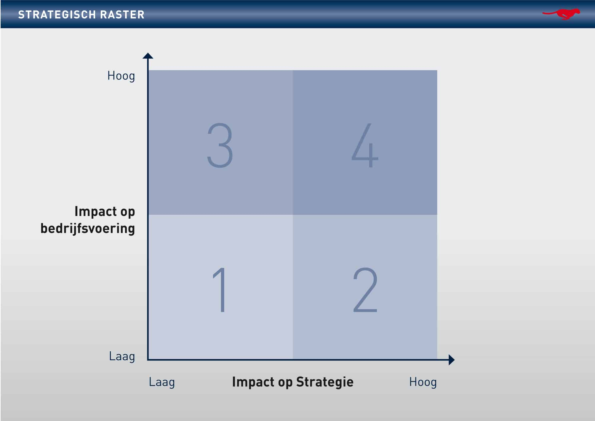 FLS_Graphic_Strategisch-raster