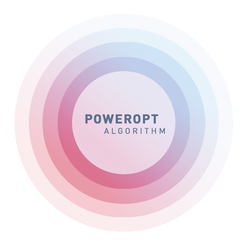 FLS_BIG-PICTURE-poweropt-3